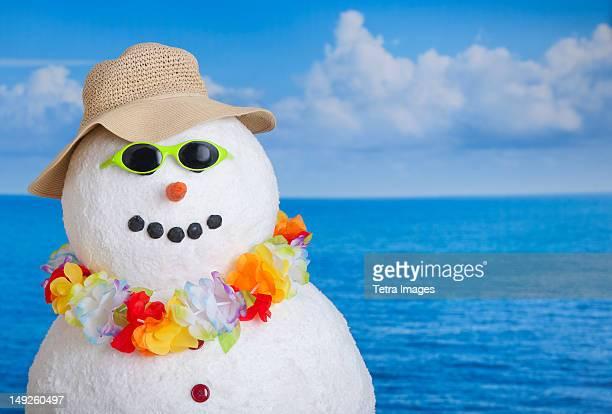 Snowman at sea