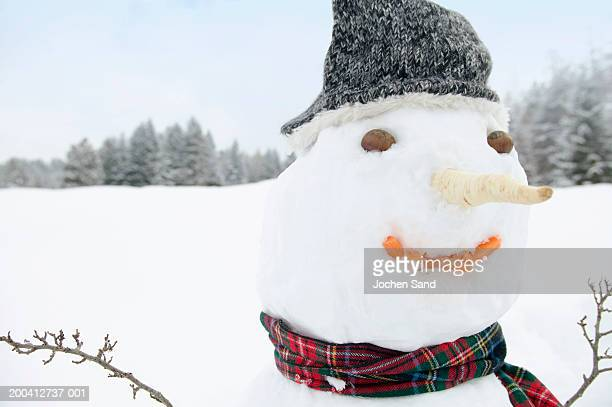 Snowman, close-up
