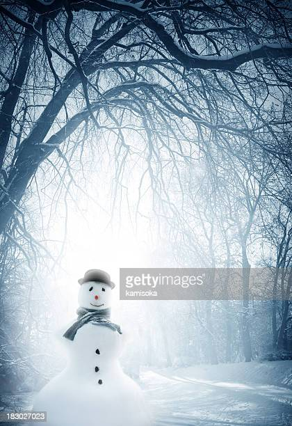 Snowman in beautiful winter landscape