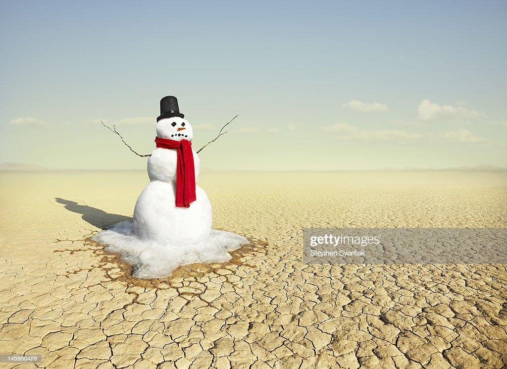 snowman in the desert : Stock Photo