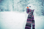 Winter scene - snowman in scarf on the woods blurred background. Shot taken with Canon 5d mk III