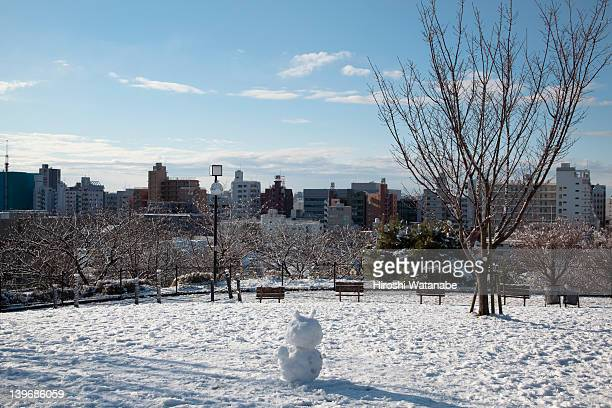 Snowman is on the hill covered with snow