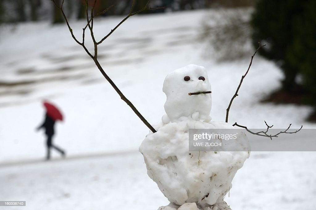 A snowman is partly melted in a park in Kassel, centralGermany, on January 29, 2013. After days of a cold spell, temperatures rise again over the freezing point in many parts of the country.