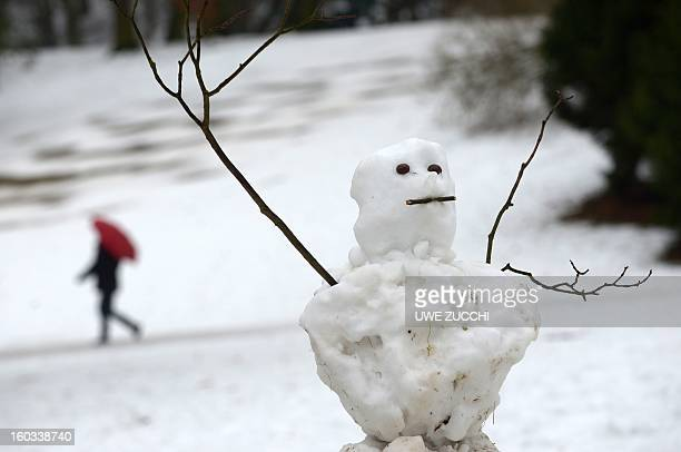 A snowman is partly melted in a park in Kassel central Germany on January 29 2013 After days of a cold spell temperatures rise again over the...