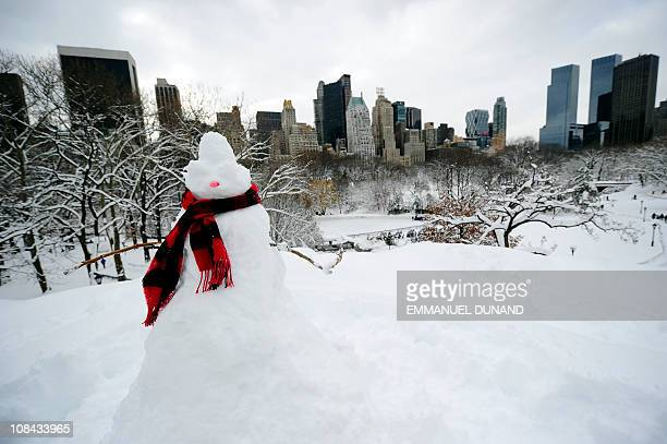 A snowman stands in front of Manhattan's skyline after heavy snow falls in Central Park in New York January 27 2011 New York shut down two airports...