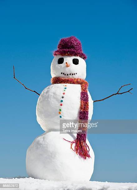 Snowman wearing hat and scarf, clear sky in background