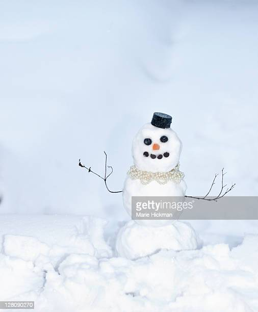 Snowman with little black hat, and little sticks for its arms