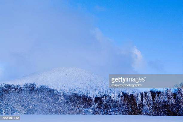 Snowscape of Hakkodasan,Aomori,Japan