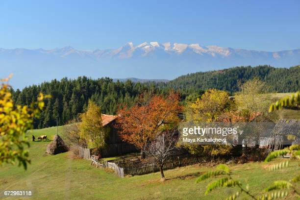 Snowy alpine peaks above an autumn colored village