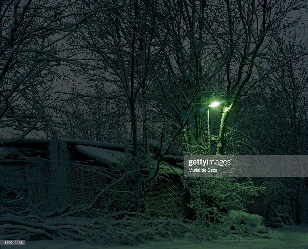 Snowy backyard : Stock Photo