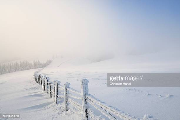 Snowy fence, Mt. Unterberg, Lower Austria, Austria, Europe