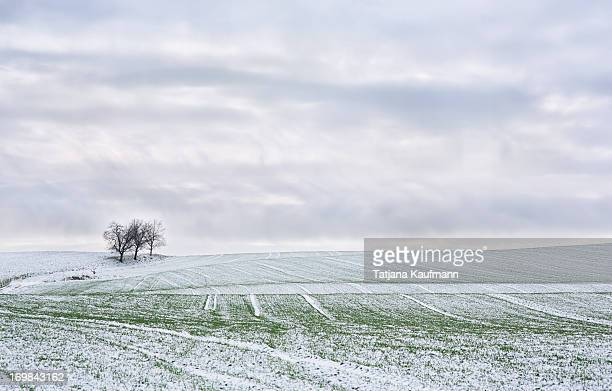 Snowy field on a heavily cloudy day