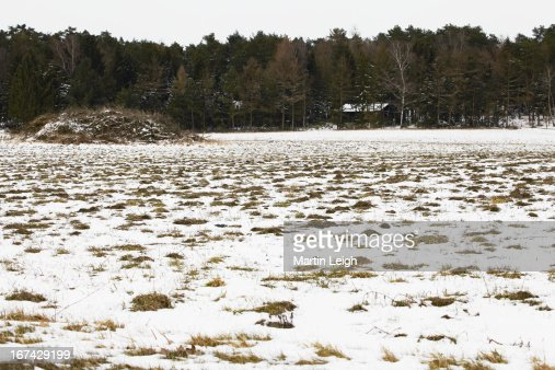 snowy frozen farmland : Stock Photo