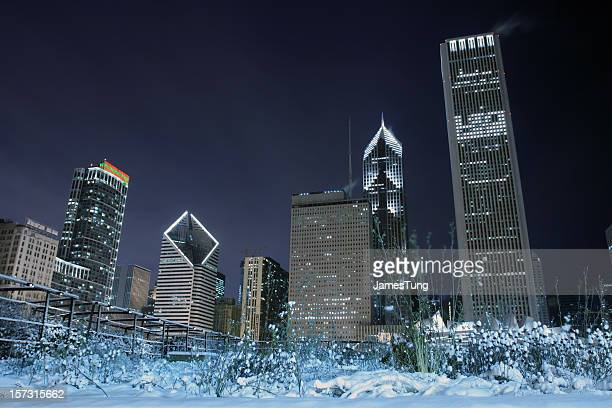 snowy garden against skyline