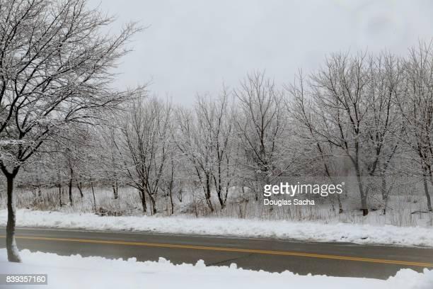 Snowy landscape along the rural roadway