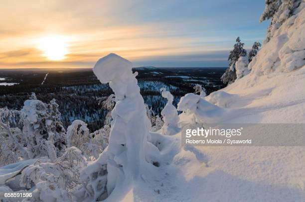 Snowy landscape in the cold arctic winter Ruka Kuusamo