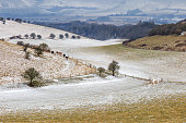 A Winter scene in the South Downs in Sussex
