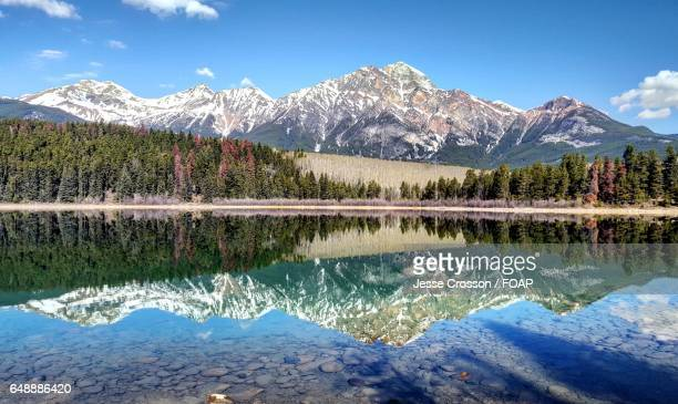 Snowy mountain and tree reflected on lake