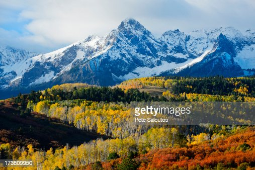 Snowy mountain and trees in rural landscape