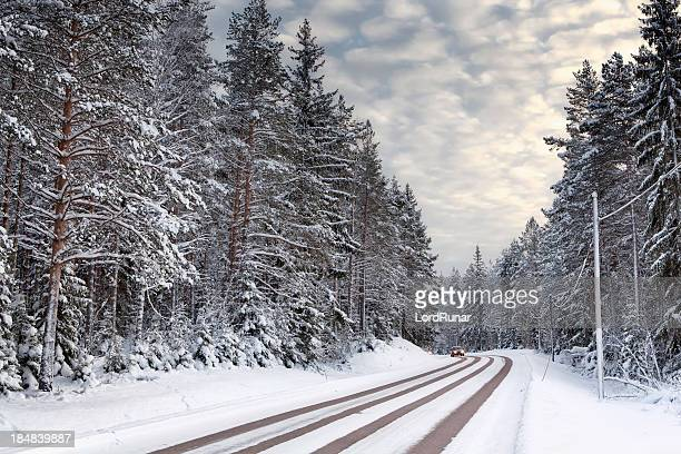 Snowy winter road through evergreen forest