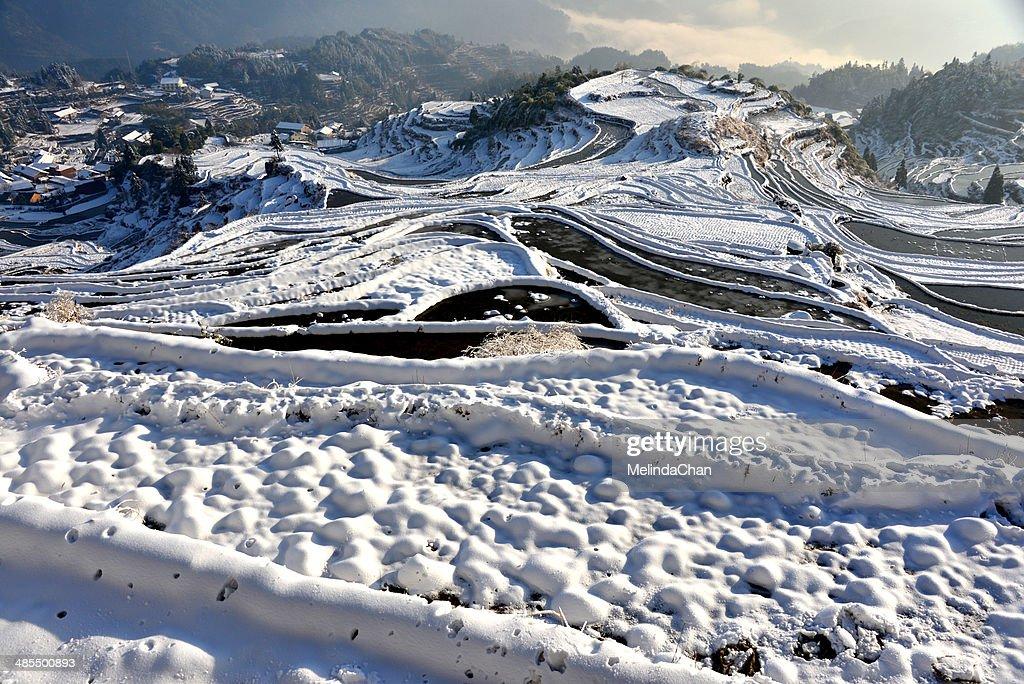 Snowy Yuhe trerrace field : Stock Photo