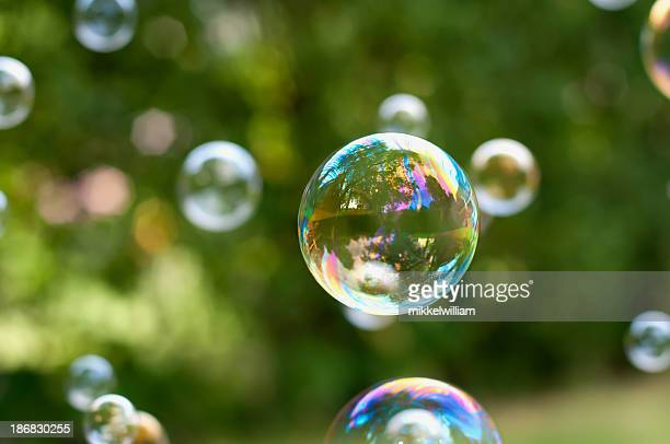 Soap bubbles floating in air