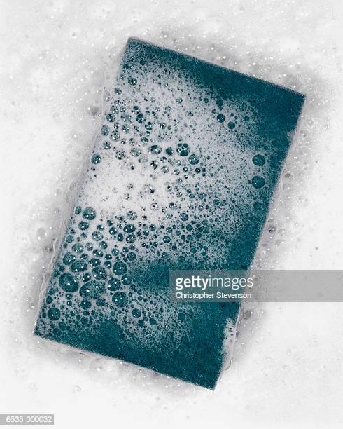 Soap Bubbles on Green Sponge