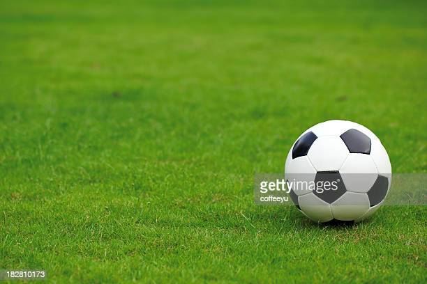 Soccer Ball on Lawn