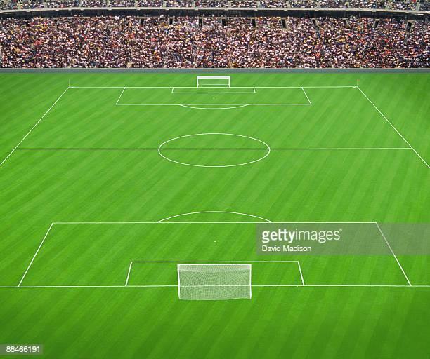 Soccer field and spectators in stadium.