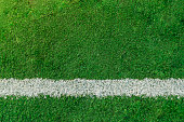 Single Line, Soccer Field, Playing Field, Grass, Striped