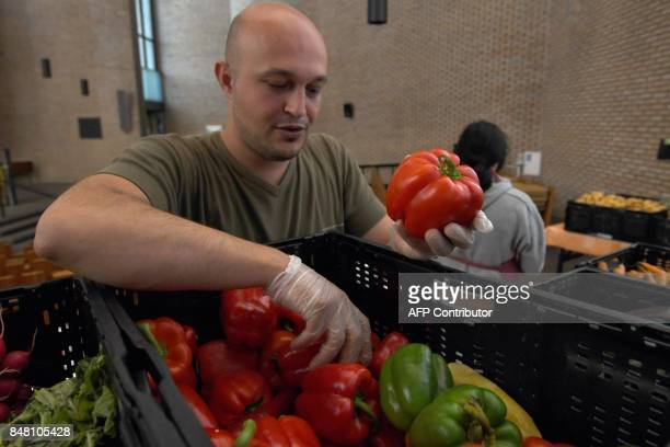 A social worker is pictured at a counter of the 'Duesseldorfer Tafel' in a church in DuesseldorfGarath western Germany on August 25 2017 The number...