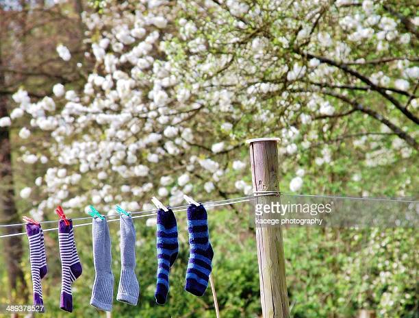 Socks on a line