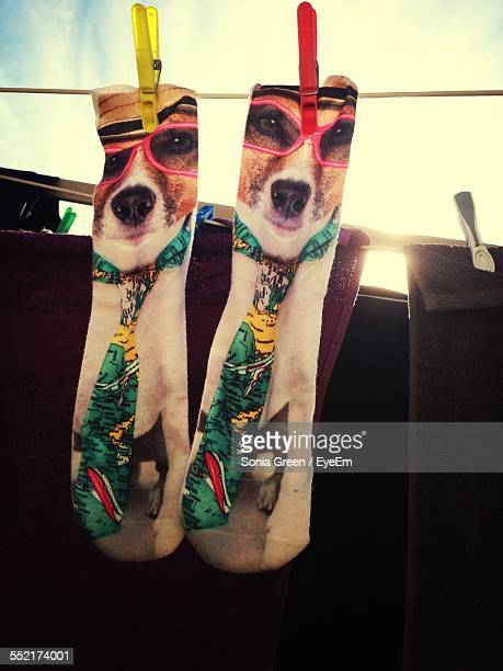 Socks On Clothes Line With Print Of Dog