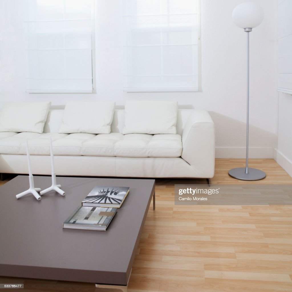 Sofa, coffee table in modern living room