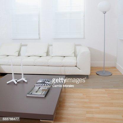 Sofa, coffee table in modern living room