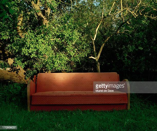 Sofa in grass