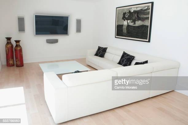 Sofas and coffee table in modern living room