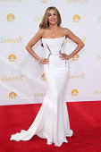Sofia Vergara arrives at the 66th Annual Primetime Emmy Awards at Nokia Theatre LA Live on August 25 2014 in Los Angeles California