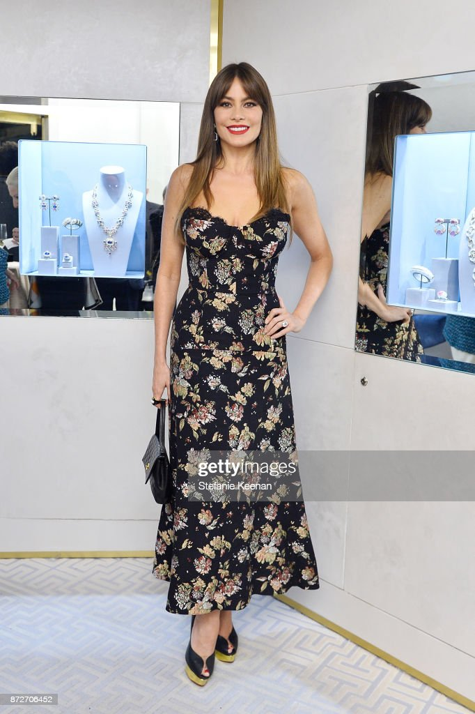 Sofia Vergara attends David Webb Hosts STOP CANCER with Elizabeth Chambers on November 10, 2017 in Beverly Hills, California.