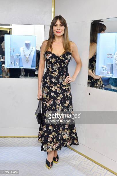 Sofia Vergara attends David Webb Hosts STOP CANCER with Elizabeth Chambers on November 10 2017 in Beverly Hills California