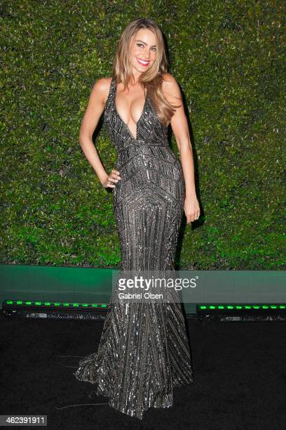 Sofia Vergara attends Fox And FX's 2014 Golden Globe Awards Party on January 12 2014 in Beverly Hills California