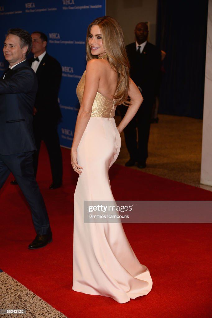 Sofia Vergara attends the 100th Annual White House Correspondents' Association Dinner at the Washington Hilton on May 3, 2014 in Washington, DC.