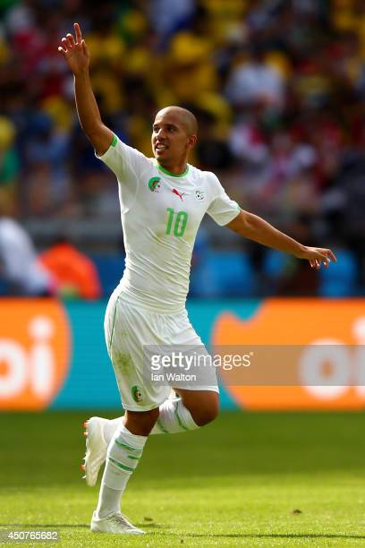 Sofiane Feghouli of Algeria celebrates scoring his team's first goal after a penalty kick during the 2014 FIFA World Cup Brazil Group H match between...