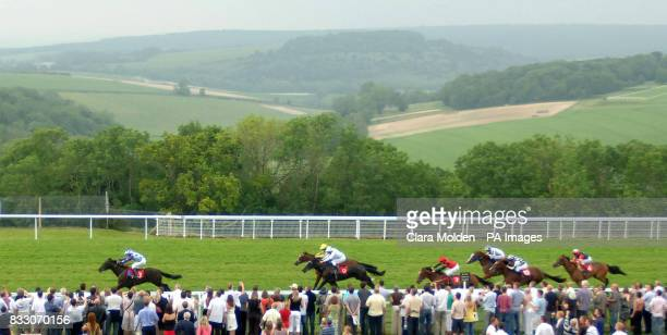 Sofia's Star ridden by jockey Jim Crowley races ahead before winning The Empire Property Group Maiden Auction Stakes at Goodwood racecourse in West...
