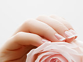 Soft selective focus. Beauty nail care. Delicate hands with french manicure holding a pink petals close up on flower background. Beautiful nails close-up, great idea for the advertising of cosmetics