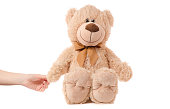 Soft toy beige bear in hand on white background isolation