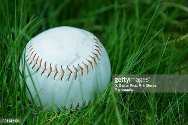 Softball in grass