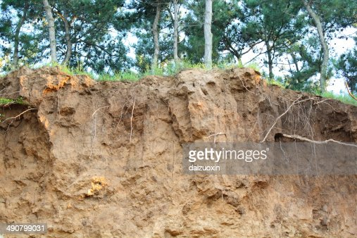 Soil erosion : Stock Photo