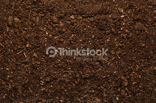 Soil texture background seen from above, top view. : Stock Photo
