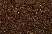 Soil texture background seen from above, top view.